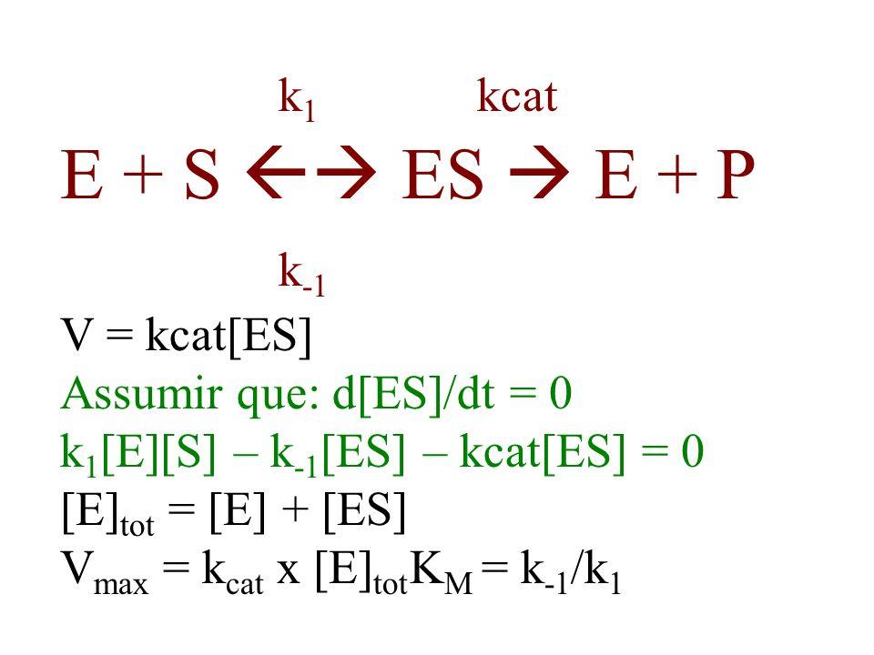 k1 kcat E + S  ES  E + P k-1 V = kcat[ES] Assumir que: d[ES]/dt = 0